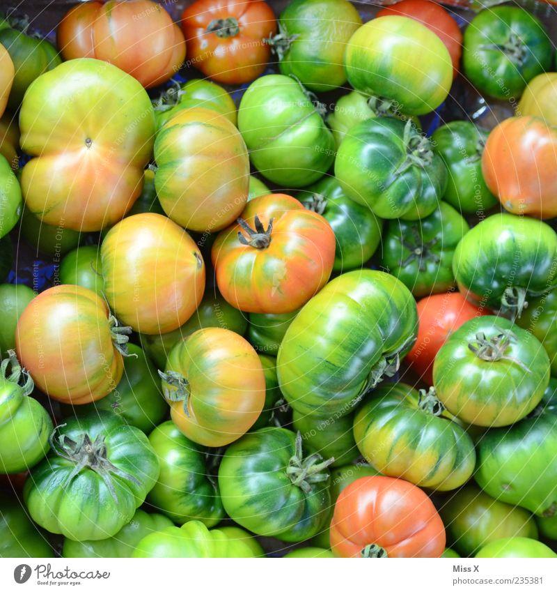 Grüne Tomaten Lebensmittel Gemüse Ernährung Bioprodukte Vegetarische Ernährung frisch lecker rund saftig sauer grün unreif Farbfoto mehrfarbig Nahaufnahme