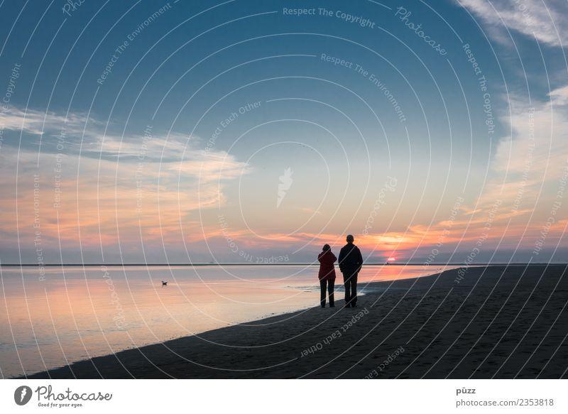 Sehnsucht Mensch maskulin feminin Frau Erwachsene Mann Paar 2 Umwelt Natur Landschaft Urelemente Wasser Himmel Wolken Sonne Sonnenaufgang Sonnenuntergang Sommer