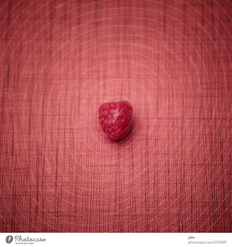 früchtchen Gesundheit rosa Frucht Lebensmittel Ernährung süß einfach Mitte lecker Bioprodukte Geschmackssinn Textilien Tischwäsche Vegetarische Ernährung minimalistisch Himbeeren