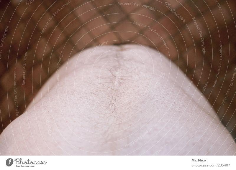 sex sells Mann Erwachsene nackt Haut maskulin Behaarung Tierhaut Übergewicht Fliesen u. Kacheln Brust dick Bauch Diät Anschnitt Unter der Dusche (Aktivität)