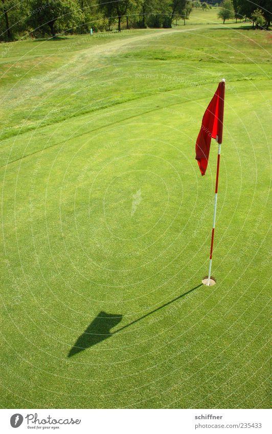 HIER - ist der schönste Grashalm Golf grün Konkurrenz Ziel Golfplatz Ballsport zielstrebig Fahne Loch einlochen Erfolg Sportrasen Putten Golfloch Außenaufnahme