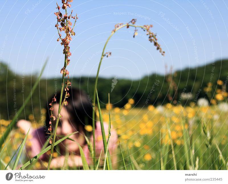 Chillen in der Wiese Mensch Junge Frau Jugendliche Erwachsene 1 Natur Landschaft Pflanze Frühling Sommer Schönes Wetter Gras Blüte Wildpflanze gelb Erholung