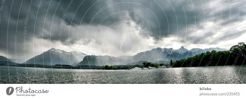 Sommergewitter zum Jubiläum Natur Landschaft Urelemente Wasser Himmel Wolken Gewitterwolken Wetter Unwetter Wind Sturm Regen Alpen Berge u. Gebirge Gipfel