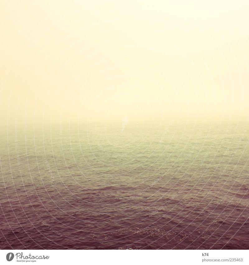 Seascape Himmel Wasser Meer gelb Sehnsucht Frieden Fernweh