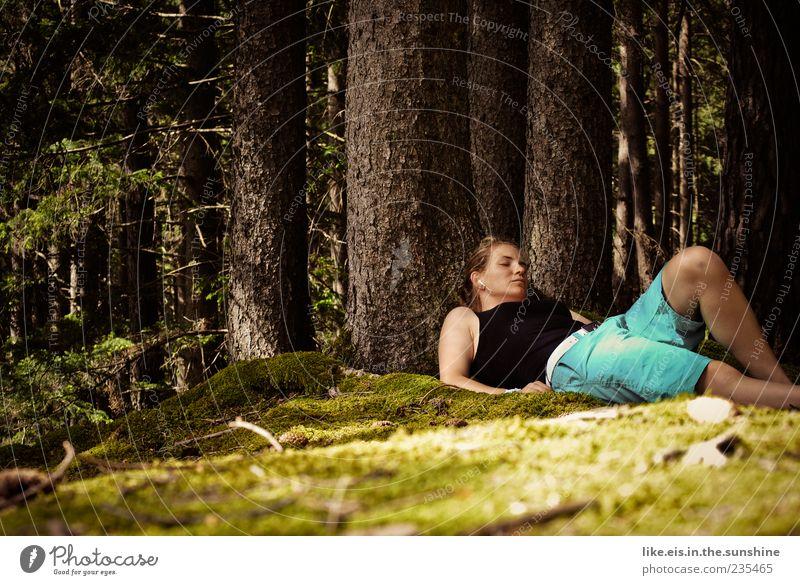 da, ein reh! Mensch Frau Natur Jugendliche Baum Sommer ruhig Wald Erwachsene Erholung Leben feminin Gras Frühling Zufriedenheit blond