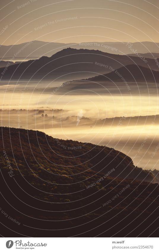 Morning glory Natur Ferien & Urlaub & Reisen Landschaft ruhig Ferne Wald Berge u. Gebirge Herbst Tourismus Freiheit Stimmung Ausflug wandern Nebel Wetter Idylle