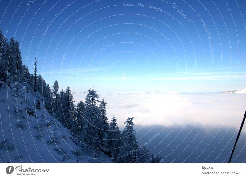 der zweite Ausblick weiß Baum blau Winter kalt Schnee Berge u. Gebirge Nebel Tanne Berghang