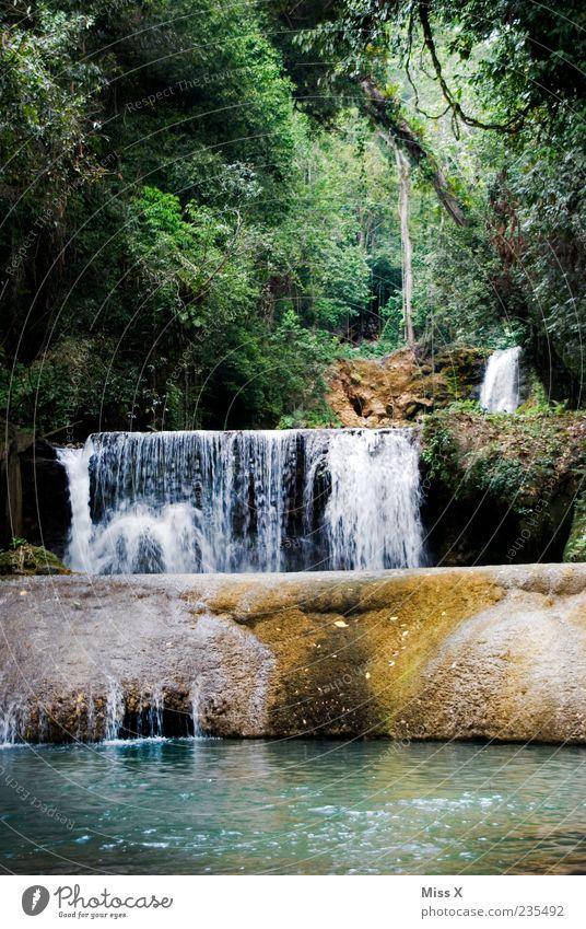 Wasserfall Umwelt Natur Landschaft Wald Urwald Felsen exotisch nass Jamaika Farbfoto mehrfarbig Außenaufnahme Menschenleer Schatten Bewegungsunschärfe