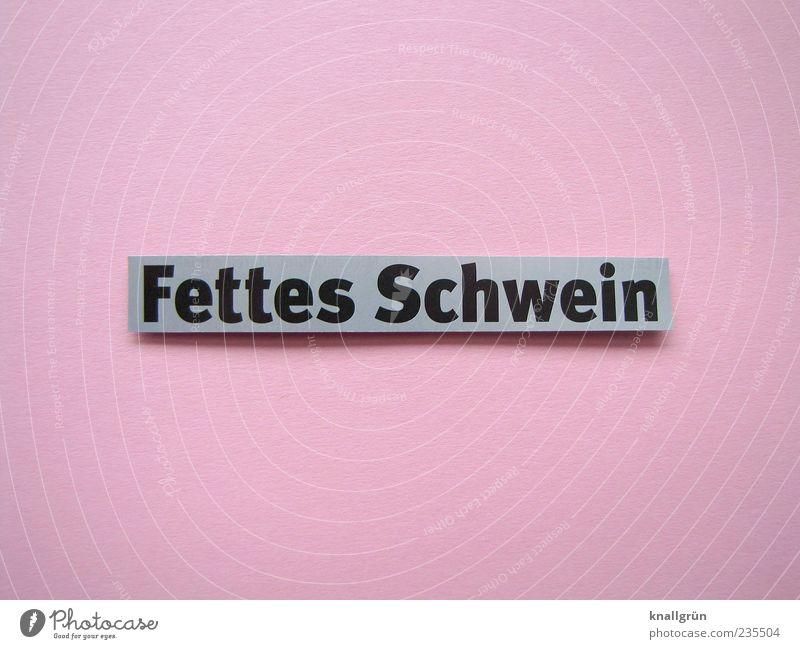 Fettes Schwein Schriftzeichen grau rosa schwarz Beleidigung Wohlstandsgesellschaft Farbfoto Studioaufnahme Menschenleer Textfreiraum oben Textfreiraum unten
