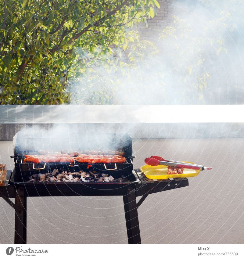 Es raucht und dampft Sommer Ernährung Lebensmittel Garten Feste & Feiern heiß Balkon Rauch lecker Grillen Abendessen Fleisch Wurstwaren Grillrost Zweige u. Äste