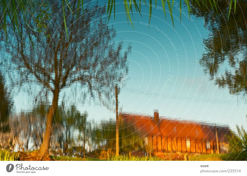 Haus im See Himmel Natur Wasser schön Sommer Baum Landschaft Haus Umwelt Gras See Wetter Klima Idylle Schönes Wetter Seeufer