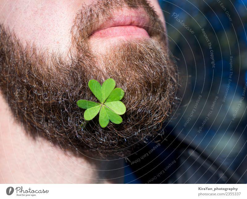 Bartiges Männergesicht mit natürlichem Grünkleeblatt Lifestyle Glück Gesicht Dekoration & Verzierung Feste & Feiern Mann Erwachsene Lippen Natur Pflanze Blatt