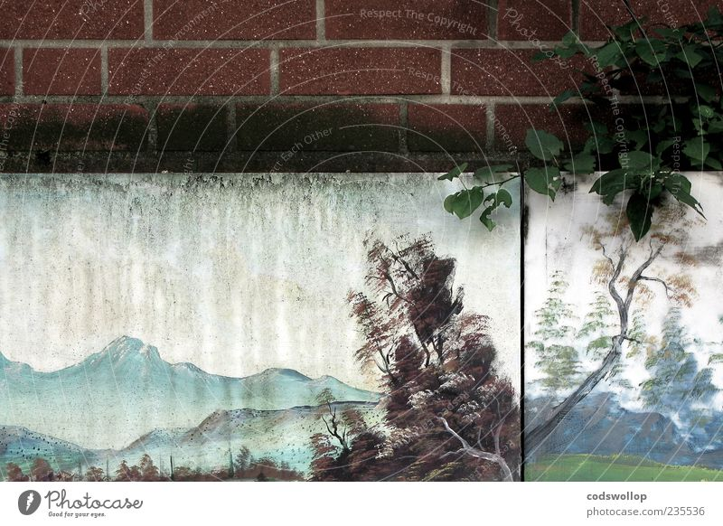 paradise lost Natur Landschaft Pflanze Baum Grünpflanze Berge u. Gebirge Mauer Wand ästhetisch dreckig trashig trist Kunst skurril Traurigkeit Vergänglichkeit