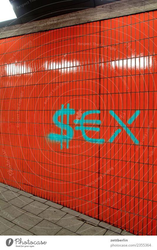 $€X Haus Stadt Stadtleben Fliesen u. Kacheln Sachbeschädigung beschmiert Sex Geschlecht Tagger Graffiti taggen Vandalismus Wort Wand Dollarzeichen Eurozeichen