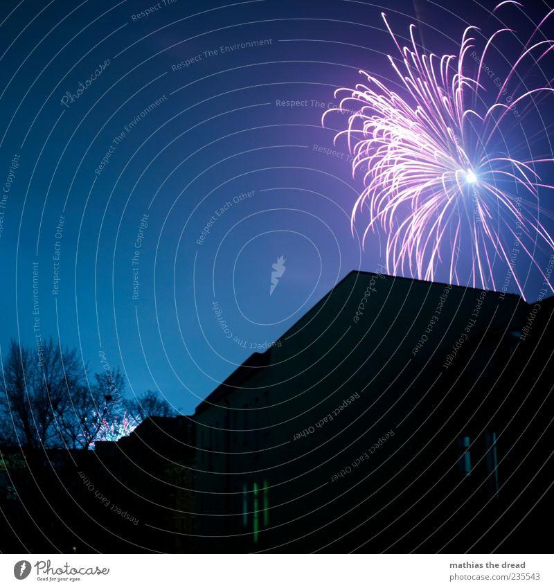 FINALE blau Baum Haus dunkel Fenster Wand Mauer Lifestyle Feste & Feiern Fassade fantastisch einzigartig Dach erleuchten Silvester u. Neujahr Feuerwerk