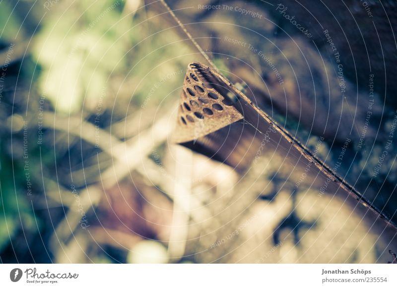 Blech Umwelt Natur Pflanze Garten alt ästhetisch braun gold grün violett Zufriedenheit entdecken Eisen Metall Gitter Loch Gras Vogelperspektive verwaschen