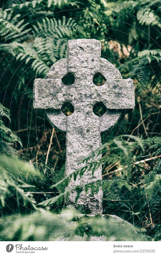 Natur alt Himmel (Jenseits) Pflanze Farbe grün Religion & Glaube Traurigkeit Gefühle Gesundheitswesen Kunst Tourismus Tod Stein Felsen Ausflug