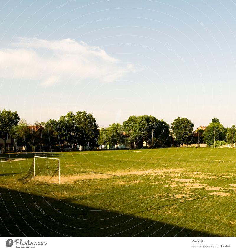 Halbzeit Himmel grün Baum Wiese Sport Fußball Pause Netz Schönes Wetter Sportrasen Tor Fußballplatz Sportgerät Fußballtor Sportplatz Sportstätten
