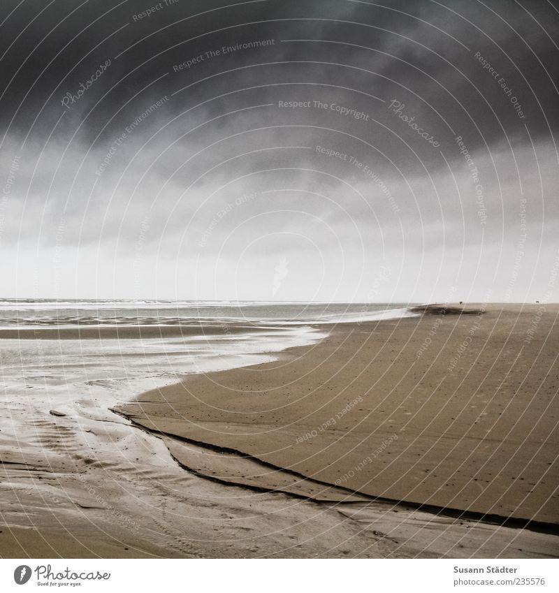 Spiekeroog | endless Wasser Meer Strand Wolken dunkel Küste Regen Wellen Spuren Nordsee Gewitter Furche Spiekeroog Gewitterwolken Wattenmeer Natur