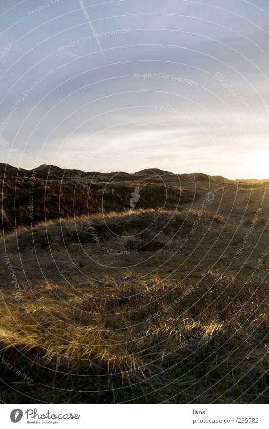 Spiekeroog | Kornkreis Natur Wolken Ferne Umwelt Landschaft Gras Küste Stimmung außergewöhnlich Idylle Hügel Düne Wolkenhimmel Dünengras