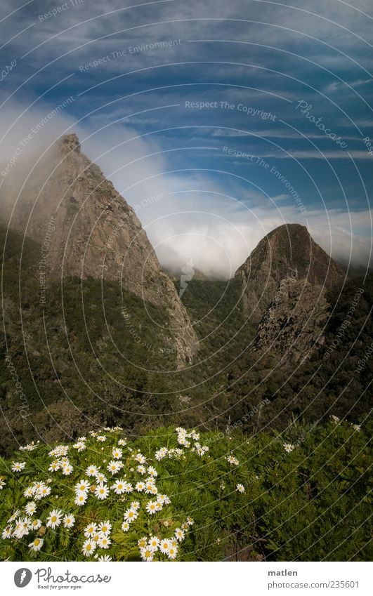 flow Landschaft Himmel Wolken Schönes Wetter Pflanze Gras Wildpflanze Felsen Berge u. Gebirge Gipfel Menschenleer blau grün weiß kegelförmig Farbfoto