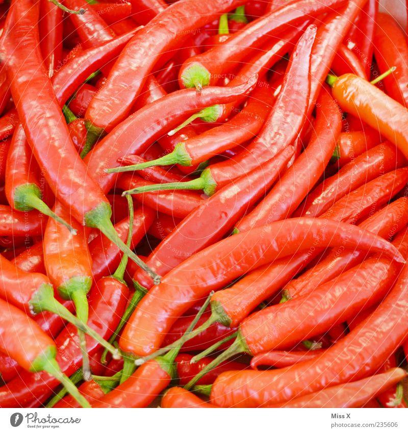 Scharf rot Ernährung Lebensmittel frisch Gemüse Kräuter & Gewürze Scharfer Geschmack lecker Bioprodukte exotisch Vegetarische Ernährung Chili Wochenmarkt Gemüseladen Gemüsemarkt Obst- oder Gemüsestand