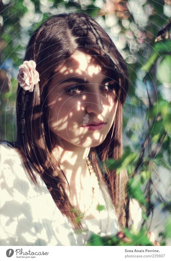 licht und schatten. Lifestyle elegant Stil feminin Junge Frau Jugendliche Haare & Frisuren Gesicht 1 Mensch 18-30 Jahre Erwachsene Schönes Wetter Baum
