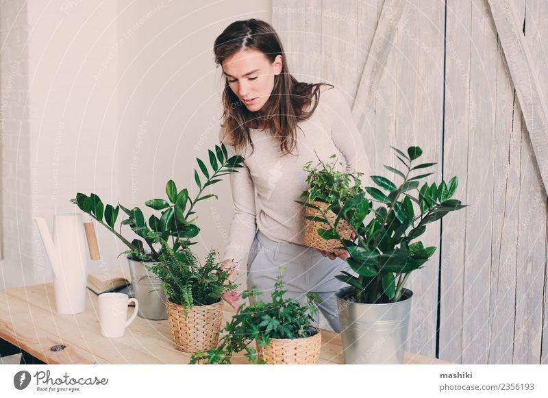 Frau Pflanze grün Blume Blatt Erwachsene Lifestyle natürlich Freizeit & Hobby modern Boden Model heimwärts gemütlich Blumentopf Stilrichtung