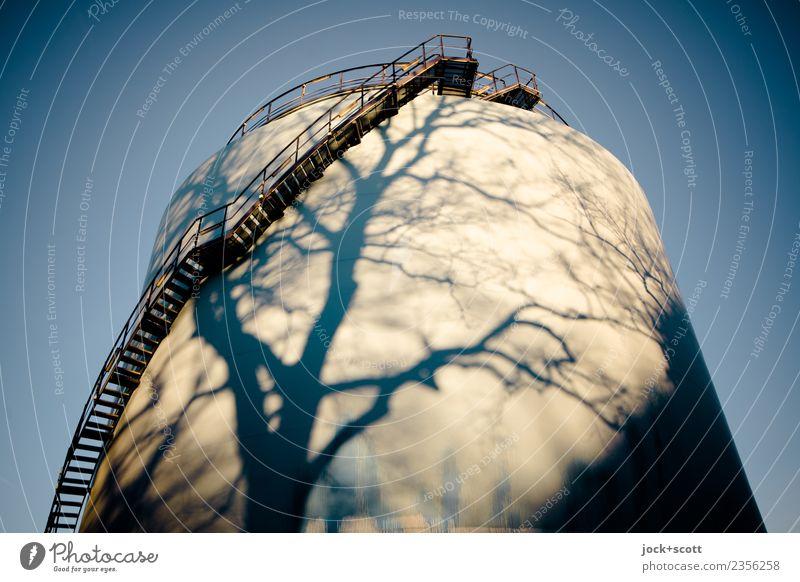 Zeit zum Auftanken Baum Erholung Winter Wärme natürlich Stimmung Linie Treppe Energiewirtschaft Technik & Technologie Kraft Schönes Wetter Wandel & Veränderung