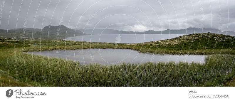 Weite Umwelt Natur Landschaft Urelemente Luft Wasser Himmel Wolken Sommer Wetter schlechtes Wetter Regen Pflanze Gras Moos Felsen Berge u. Gebirge Küste Seeufer