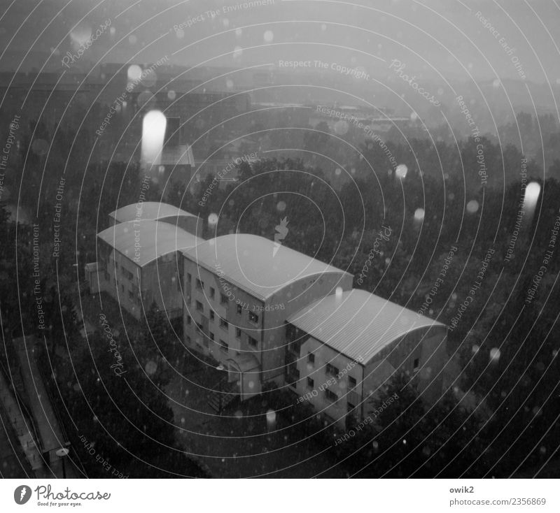 Gravitation Landschaft Winter Schönes Wetter Eis Frost Schneefall Baum Haus kalt fallen grau Plattenbau Schwarzweißfoto Außenaufnahme Menschenleer
