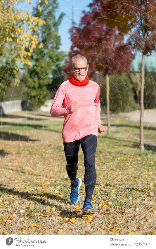 Mensch Natur Mann alt Sommer grün Einsamkeit Erwachsene Lifestyle Gesundheit Senior Sport Glück Freizeit & Hobby maskulin Park