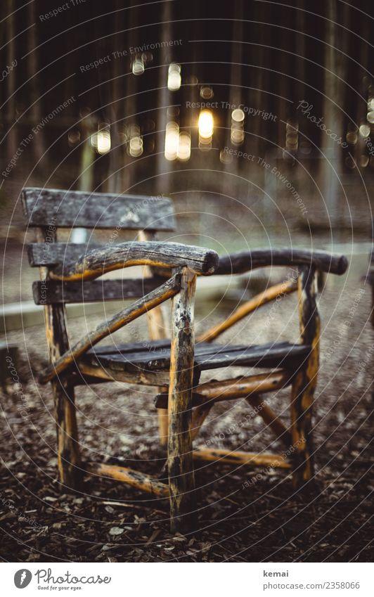 Thron Wohlgefühl Zufriedenheit Sinnesorgane Erholung ruhig Freizeit & Hobby Ausflug Freiheit Camping Stuhl Holzstuhl Gartenstuhl Natur Herbst Schönes Wetter