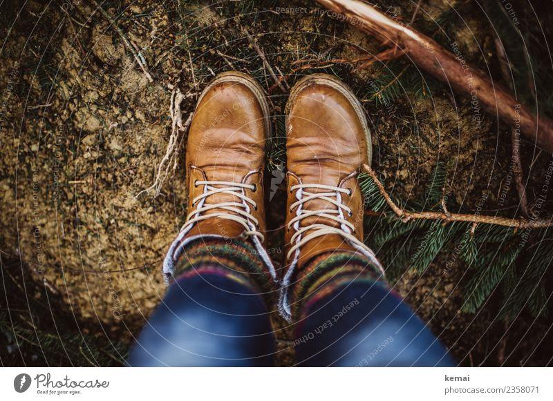 Braune Stiefel und Wollsocken harmonisch Wohlgefühl Erholung ruhig Freizeit & Hobby Abenteuer Freiheit Leben Fuß 1 Mensch Natur Erde Frühling Pflanze
