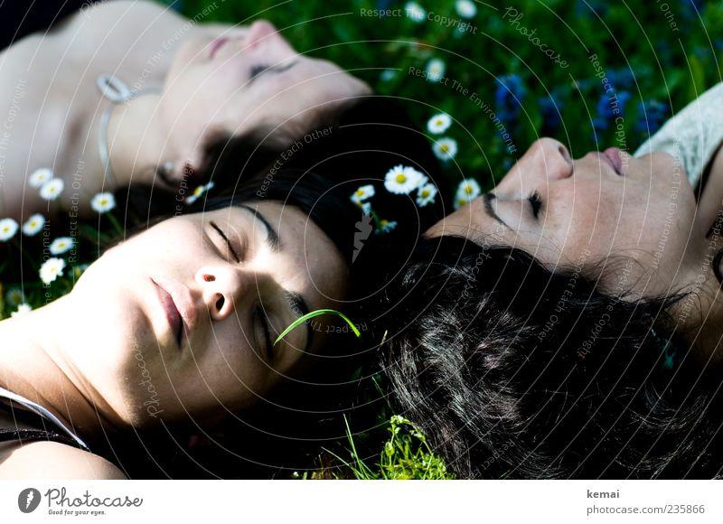 Rosenrot und ihre Schwestern Mensch Natur Jugendliche Pflanze Sommer Blume Gesicht Erwachsene Auge Umwelt Leben Wiese feminin Haare & Frisuren Kopf Blüte