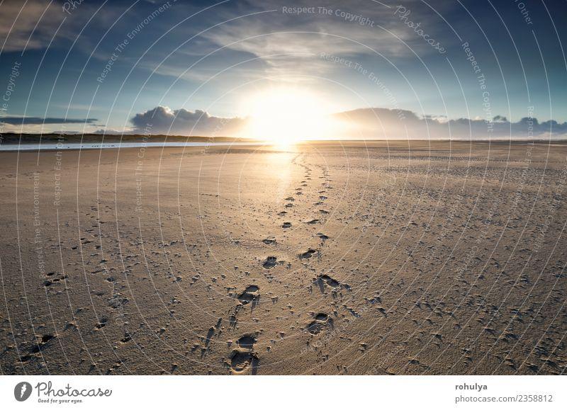 Fußwege zum Sonnenaufgang am Horizont, Texel Ferien & Urlaub & Reisen Strand Paar Natur Landschaft Sand Himmel Schönes Wetter Küste Nordsee Wege & Pfade blau