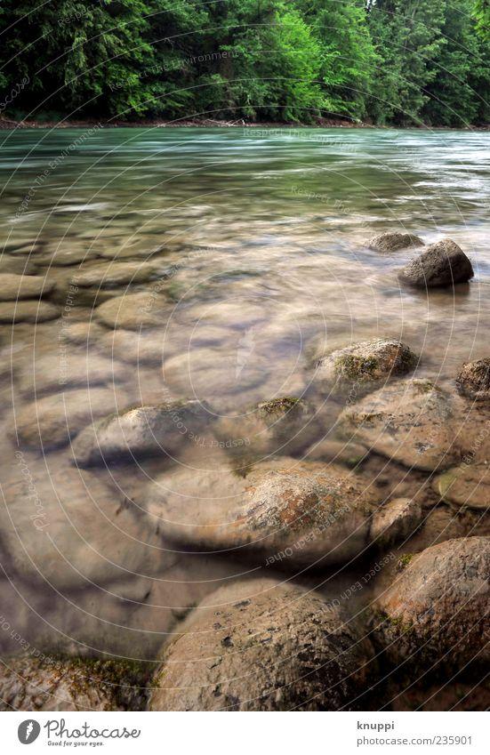 auf zu neuen Ufern Umwelt Natur Landschaft Pflanze Erde Wasser Sonnenlicht Sommer Wellen Flussufer Bach ästhetisch blau braun grün fließen Stein steinig türkis