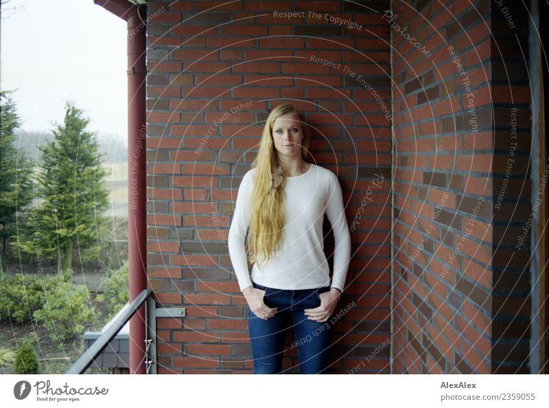 Balkonvergnügen Häusliches Leben Garten Regenrohr Backsteinwand Junge Frau Jugendliche 18-30 Jahre Erwachsene Baum T-Shirt Jeanshose blond langhaarig Stein