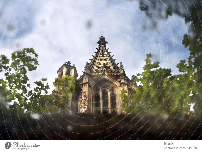 ulmer Münster in der Pfütze Natur Baum Pflanze Architektur Religion & Glaube Gebäude groß Kirche Turm Bauwerk Wahrzeichen Dom Sehenswürdigkeit Kathedrale
