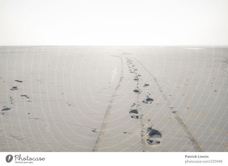 Spiekeroog | Space Odyssey Ferien & Urlaub & Reisen Ferne Strand Insel Umwelt Natur Landschaft Erde Sand Horizont Sonne Klima Wetter Fußspur laufen hell