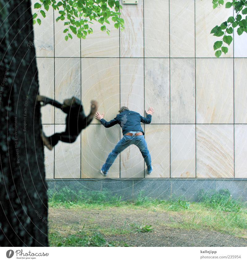 menschenaffe Mensch maskulin Mann Erwachsene 1 Baum Tier Wildtier Zoo Bewegung springen Klettern Affen Schimpansen Menschenaffen Evolution Farbfoto