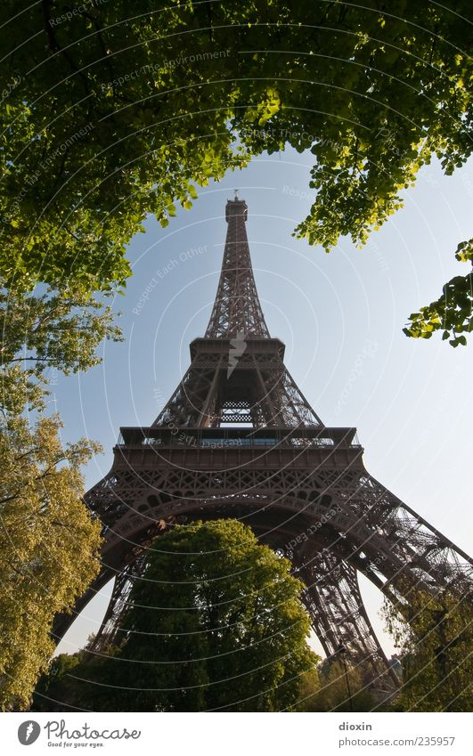 Wahrzeichen Himmel Natur alt Baum Pflanze Blatt Architektur Metall Park hoch Europa Turm Schönes Wetter Bauwerk historisch Paris