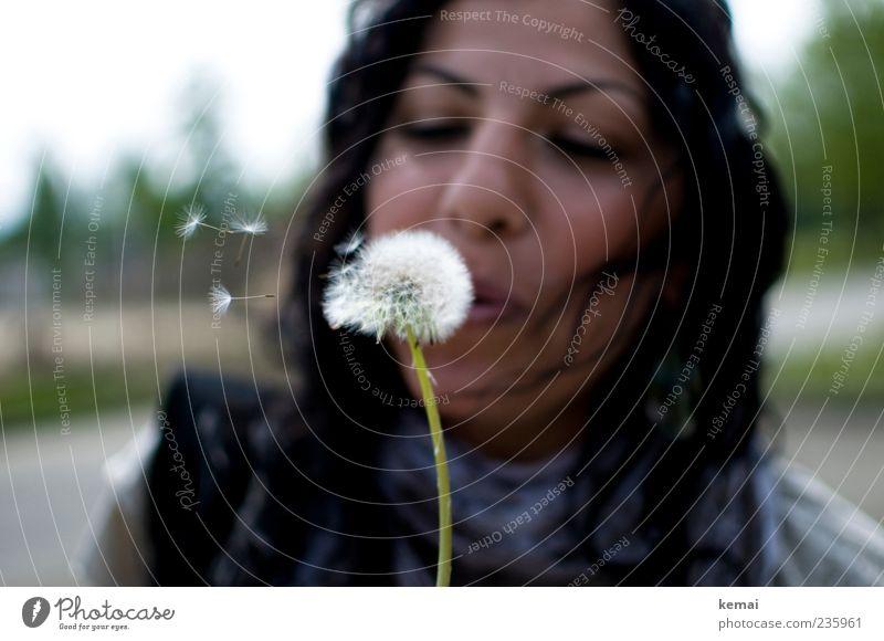 Pusten Mensch Natur Jugendliche Pflanze Blume Freude Gesicht Erwachsene Umwelt Leben feminin Haare & Frisuren Kopf Blüte fliegen Nase