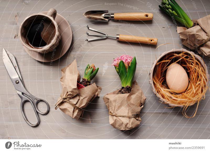 Oster- und Frühlingsvorbereitungen Abendessen Teller Freizeit & Hobby Garten Dekoration & Verzierung Tisch Feste & Feiern Ostern Handwerk Werkzeug Schere