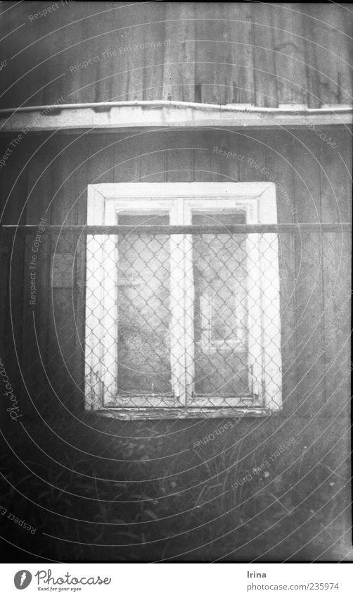 Vredebox | Please don´t leave alt Einsamkeit Fenster außergewöhnlich Armut Dach Zaun schäbig analog Ruine Unbewohnt Altstadt Dachrinne Polen Holzhaus Fensterrahmen