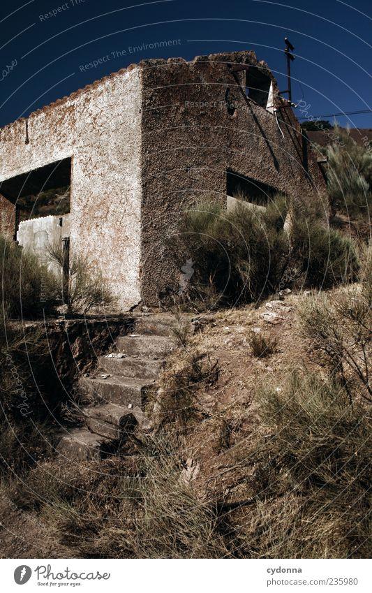 Lost Natur Ferien & Urlaub & Reisen Sommer Einsamkeit Haus ruhig Umwelt Wand Architektur Wege & Pfade Mauer Zeit gehen Treppe Häusliches Leben Sträucher