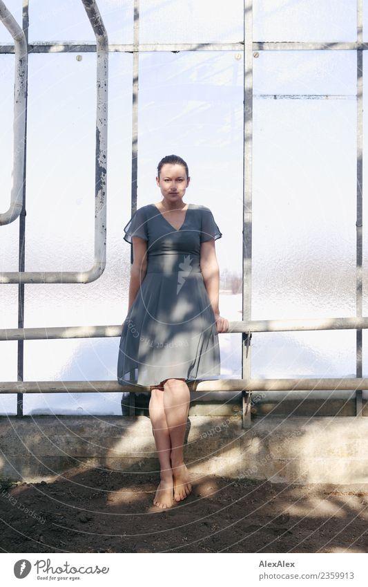 gewachsen Jugendliche Junge Frau schön Erotik Fenster 18-30 Jahre Erwachsene Leben Beine Stil Zufriedenheit Körper Erde ästhetisch Glas Schönes Wetter