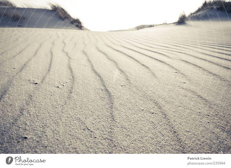 Spiekeroog | Sehnsucht Himmel Natur schön Ferien & Urlaub & Reisen Strand Freude Einsamkeit ruhig Ferne Erholung Umwelt Wärme Freiheit Sand Linie hell