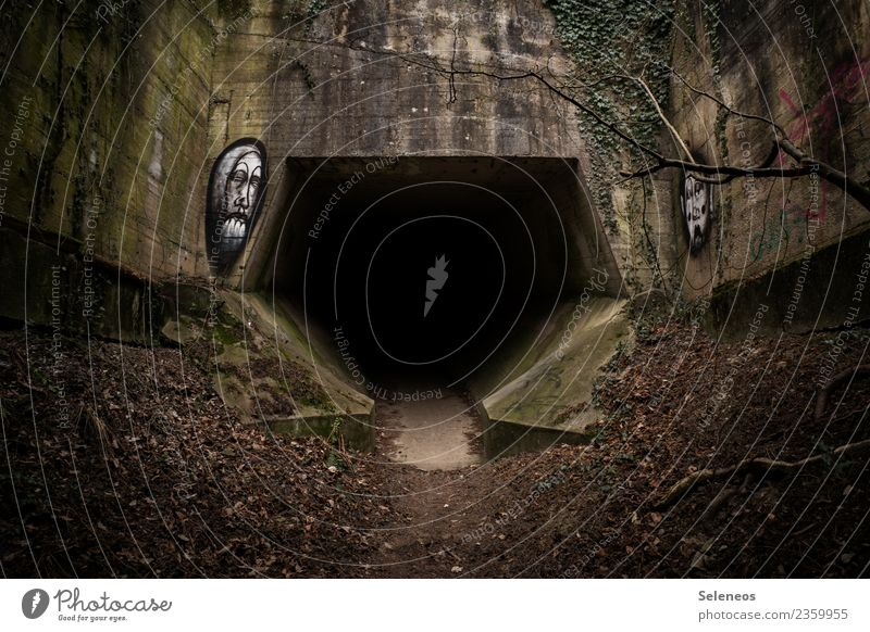 Wer traut sich? Winter dunkel Architektur Herbst Graffiti Brücke Bauwerk gruselig Tunnel Endzeitstimmung