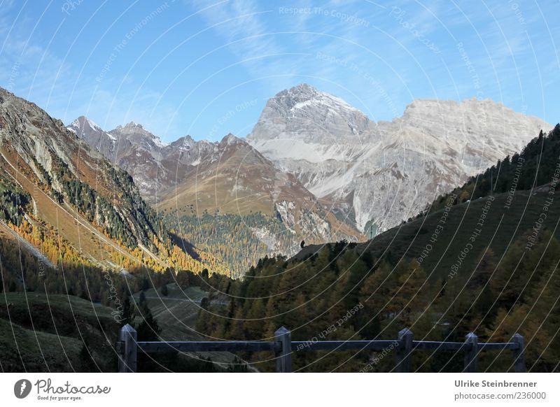 Am Berninapass Natur Landschaft Pflanze Himmel Sonnenlicht Herbst Schönes Wetter Baum Sträucher Felsen Alpen Berge u. Gebirge Schweiz Gipfel Schlucht